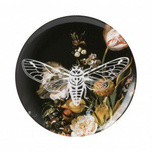 Wandbord Nachtvlinder
